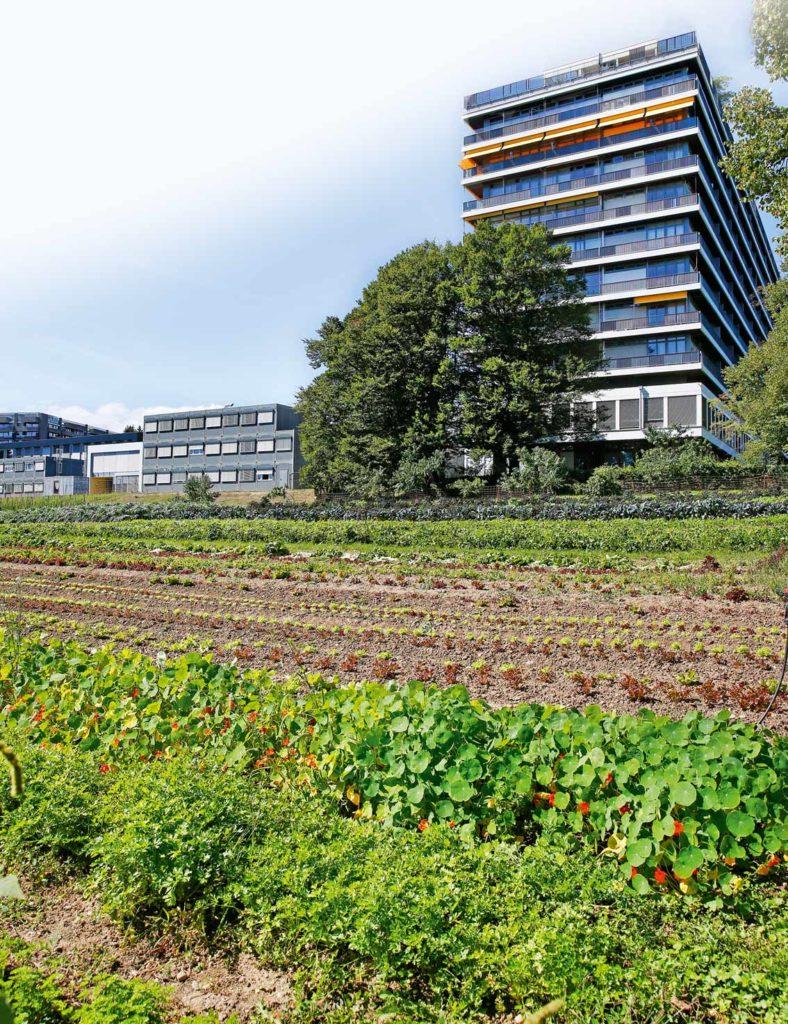 La ferme de Budé, Suisse Romande